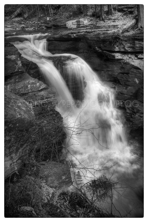Murray Reynolds Falls (closeup)