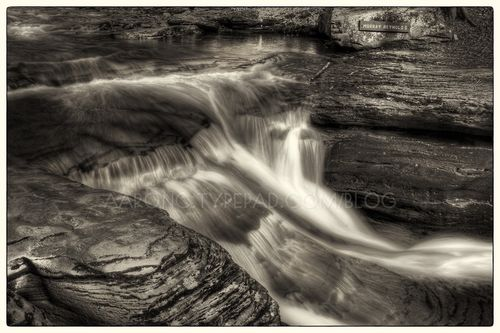 Top of Murray Reynolds Falls